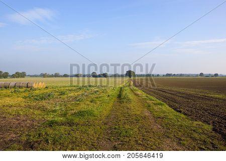 Farm Track In Yorkshire