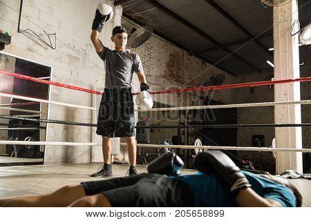 Winner In A Box Fight