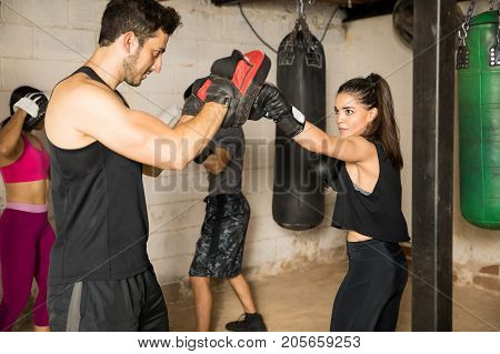 Group Of People Training In A Boxing Gym