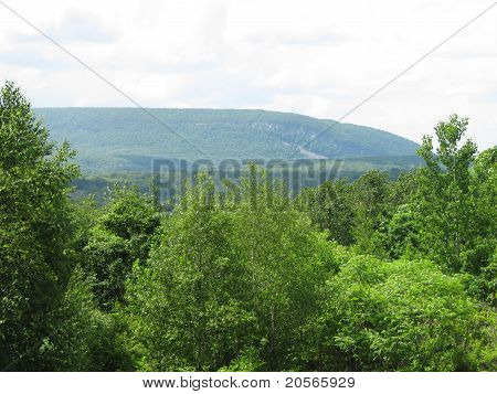 Scenic overlook view near Delaware Water Gap