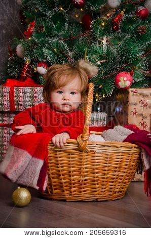 A little girl in a basket under a Christmas tree decorated with Christmas toys and tinsel. Picture for congratulations on Christmas or Happy New Year.