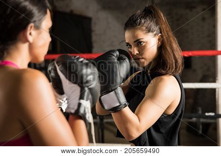 Female Boxer Ready To Start A Fight
