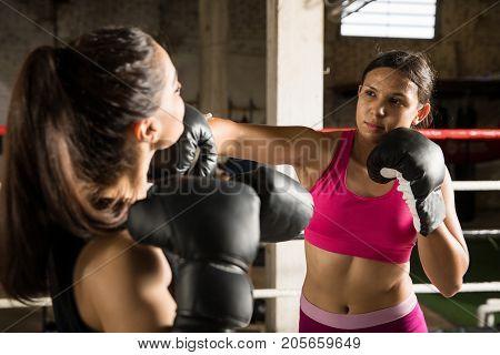 Female Boxer Punching Her Opponent