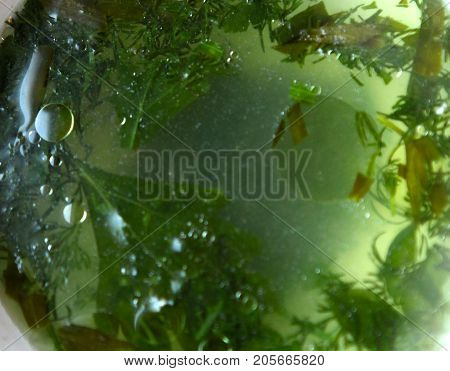Chicken Broth With Parsley And Dill
