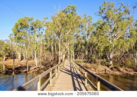 Boardwalk to the Horseshoe Lagoon Wetland and Floodplain Reserve - Moama, New South Wales, Australia
