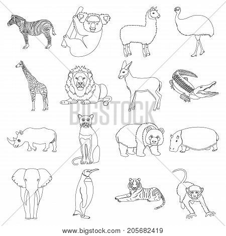 Ostrich emu, crocodile, giraffe, tiger, penguin and other wild animals. Artiodactyla, mammalian predators and animals set collection icons in outline style vector symbol stock illustration .