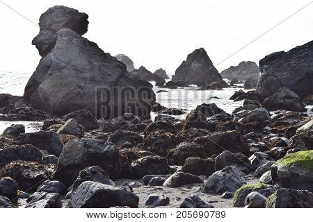 Rocky terrain taken at a rural beach during low tide on the Northern California Coast in Sonoma County, CA poster