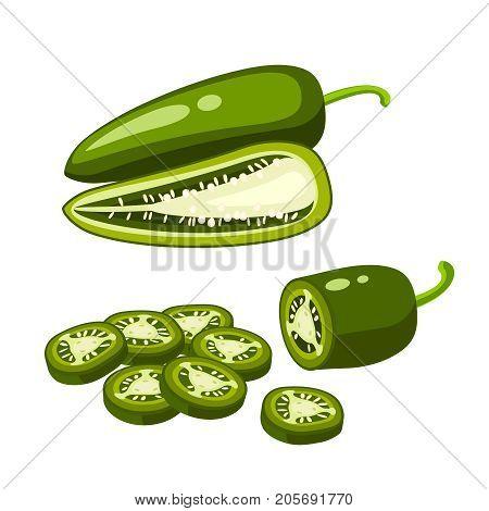 Hamburger ingredient. Sliced jalapeno pepper half and whole. Vector illustration cartoon flat icon isolated on white.