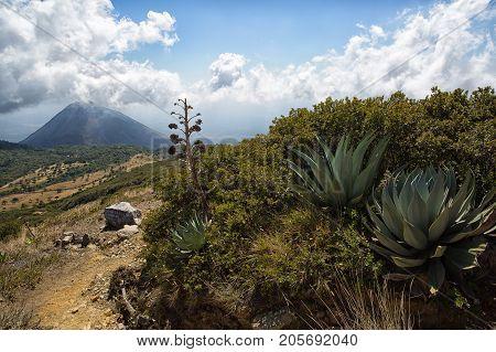 view of Izalco volcano from the Santa Ana volcano in Cerro Verde national park El Salvador