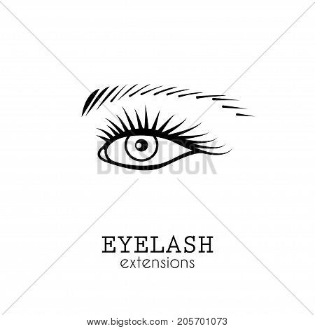 Eye Eyelash Extensions