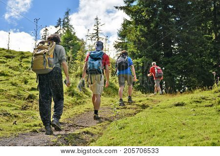 Group of hikers walking up a alpine trail
