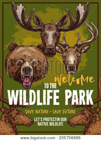 Wild animals welcome poster for wildlife park or zoo. Vector sketch grizzly bear, forest elk or deer and reindeer, African savanna gazelle or antelope for animal save protection design template
