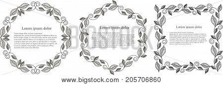 Monochrome leaf round, hexagon, square frame Lorem ipsum stock vector illustration