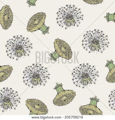 Beautiful floral seamless pattern with dandelion yellow flower heads and blowballs hand drawn in antique style. Botanical vector illustration for fabric print, wallpaper, wrapping paper, backdrop