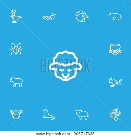 Set Of 13 Editable Zoo Outline Icons. Includes Symbols Such As Kitty, Ox, Rodent Desert And More