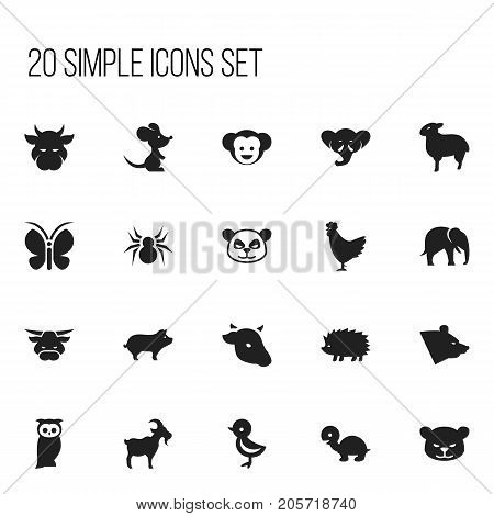 Set Of 20 Editable Zoology Icons. Includes Symbols Such As Trunked Animal, Bird, Baboon And More