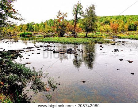 The banks of the lower Haw River in North Carolina.