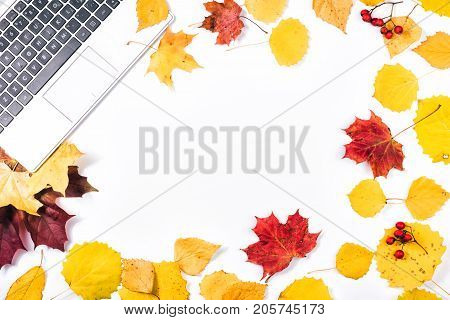 Fall flat lay, home office table. Workspace with laptop. Space in center for copy text your words or design element. Colorful yellow and golden leaves