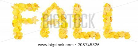 Word fall isolated on background. Autumn composition. Yellow and golden autumn leaves. Flat lay top view
