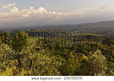 The hilly landscape and the evening sunlight. Tuscany Italy