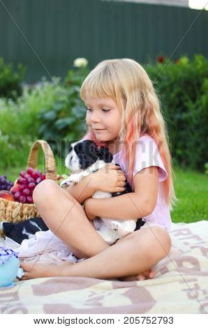 Little Blond Girl Playing With Shi Tzi Puppies. Happy Caucasian Girl With Her Pets