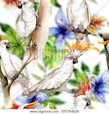 Sky bird white macaw pattern in a wildlife by watercolor style. Wild freedom, bird with a flying wings. Aquarelle bird for background, texture, pattern, frame, border or tattoo.