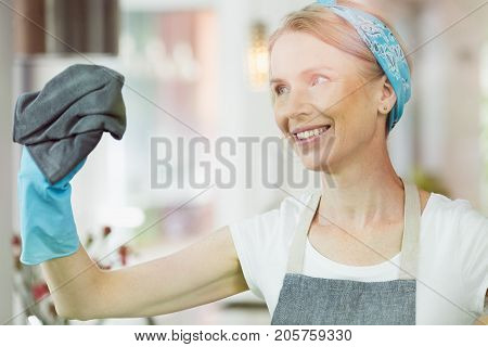 Woman Cleaning Windows At Home