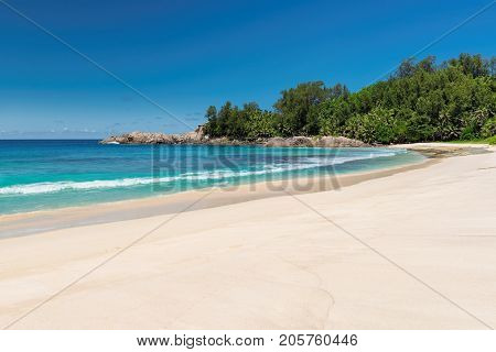 Untouched tropical beach with palm trees and turquoise sea on Paradise island.
