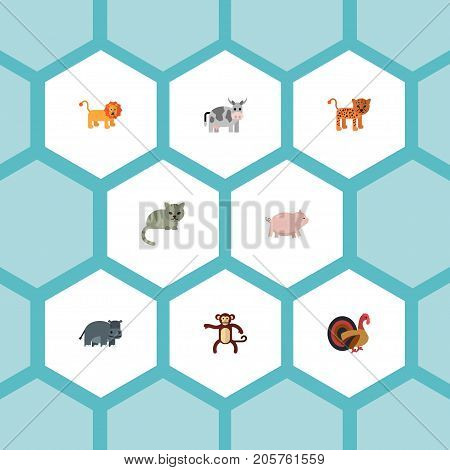 Flat Icons Gobbler, Panther, Hippopotamus And Other Vector Elements