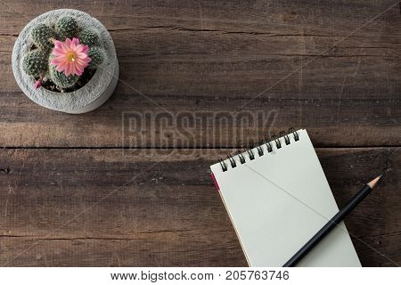 Pink cactus flower in cement pot with notebook diary and pencil on rustic  wood background. (selective focus)