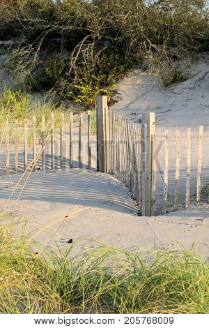 Snow fence and sea grass placed at the edge of a small dune to stem beach erosion.