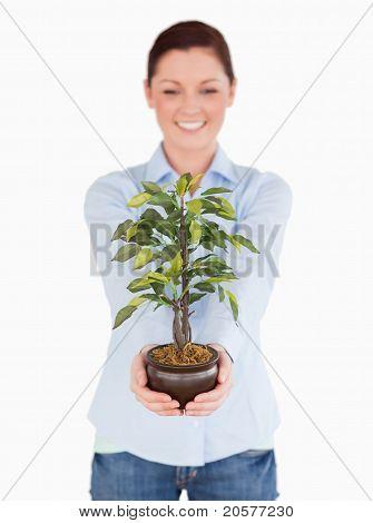 Schöne Rothaarige weibliche halten eine Zimmerpflanze stehen