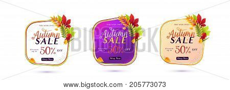 Vector illustration of fashion autumn sale banner set isolated on white background with white round geometric frame, color lines, calligraphy text sign 50 percent off, falling leaves