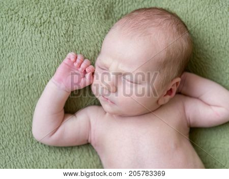 lovely newborn baby  sleeps curled up, top view