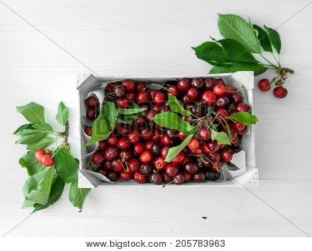 Huge box with ripe red cherries with leaves sitting on white wooden table, topview