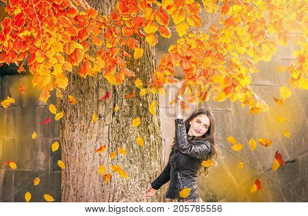 Beautiful girl with blue eyes dressed in a black jacket reaches the colorful branches watching the falling leaves enjoying the autumn atmosphere.