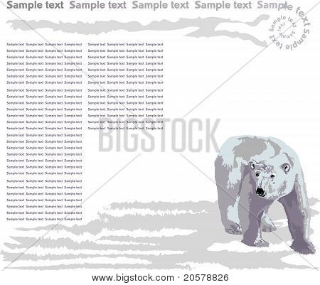 Sample - Bear