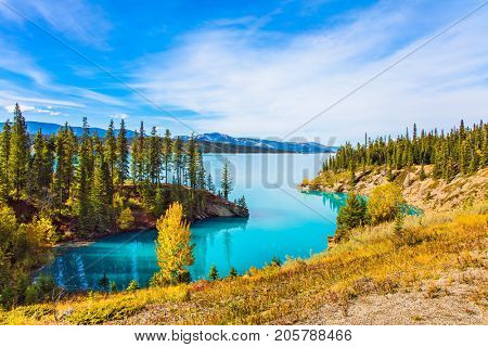 Abraham Lake is the most beautiful lake in the Rockies of Canada. Warm sunny day in autumn, Indian summer. The concept of ecological and active tourism