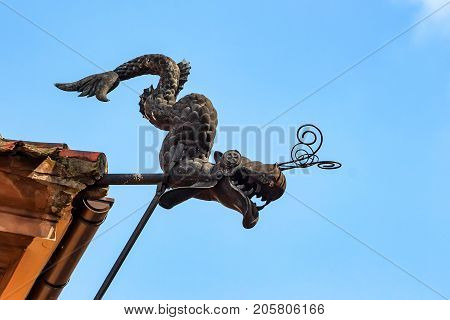 Close up black dragon gargoyle in street against blue sky