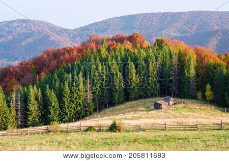 Autumn landscape with wooden huts. Colorful forest on the mountain hills