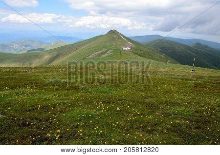 Vast expanse of Osogovo range green meadows, Bulgaria