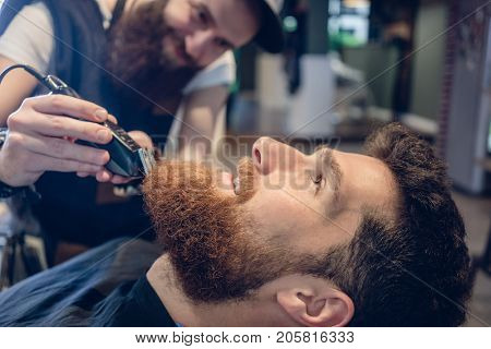 Side view close-up of the head of a redhead young man and the hand of a skilled barber, trimming his beard with an electric trimmer in a trendy hair salon for men