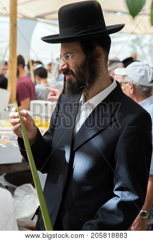 JERUSALEM, ISRAEL - OKTOBER 16, 2016: Religious Jew in a black hat chooses ritual plant palm. Traditional market before the holiday of Sukkot