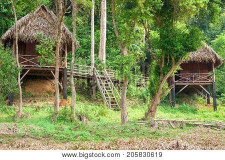 Tourist huts on the outskirts of the jungle near Bau Sau (Crocodile Lake)   in Cat Tien National Park, Vietnam, Asia.