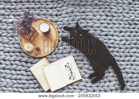 Black cat relaxing on knitted woolen chunky blanket. Book and wooden tray with home decor on the warm soft bed. Scandinavian style, hygge, autumn weekend cozy concept.