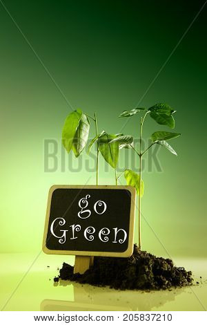 love enviroment go green concept