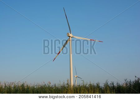 wind turbines for generating electricity. mechanical power turns into electricity