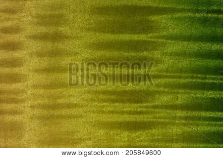 Finished wood surface with beautiful figured grain.Wood has tiger stripe or curly stripe grain. colored with translucent yellow and green dye and lacquer top coat.