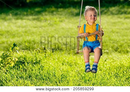 Portrait of toddler child swinging outdoors. Rural scene with one year old baby boy at swing. Healthy preschool children summer activity. Kid playing outside.