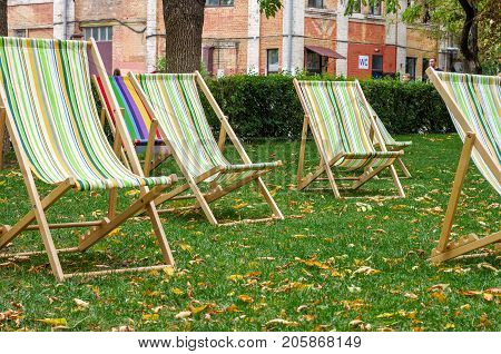 Beach chairs in a row. A place to relax.